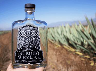 El Buho Alcohol Marketing Companies Brand Development | Eventige
