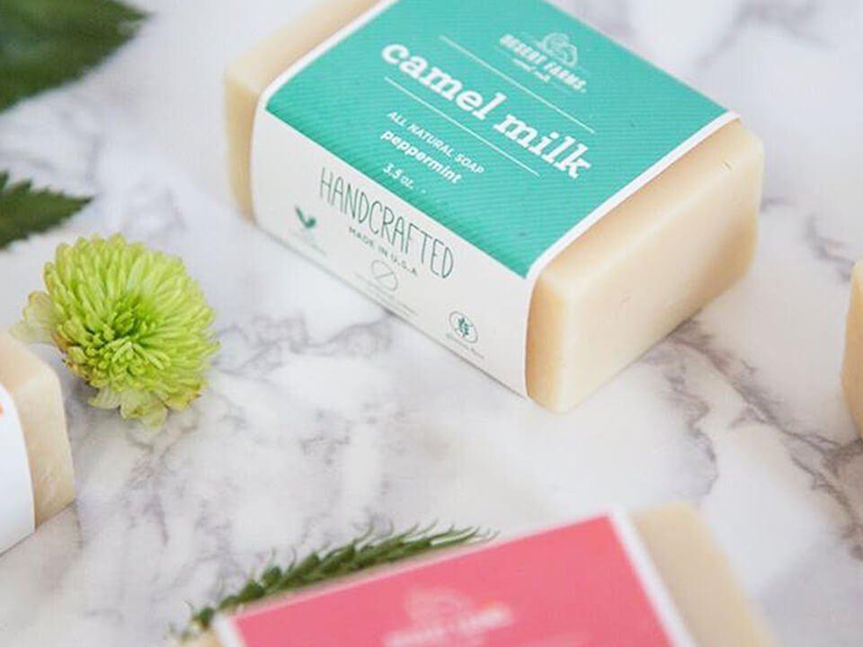 CPG Marketing Company Showing Packaging Insert Design for New Camel Milk Soap Line