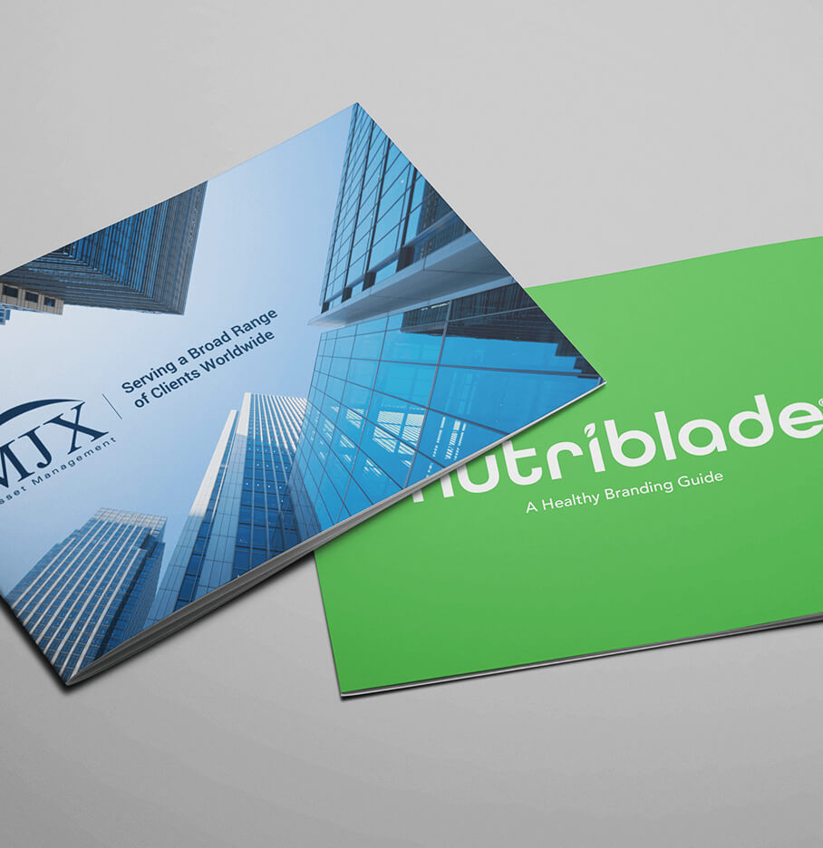 Brand Design Showing Two Branded Corporate Brochures