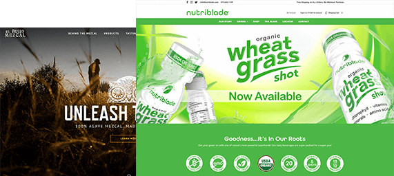 Web Development Agency Graphics for Beverage Brand And Hunting Brand
