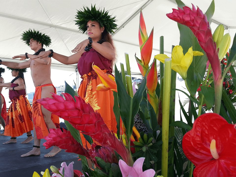 Hula Dancers At Event Marketing Company Event For Airline Promo