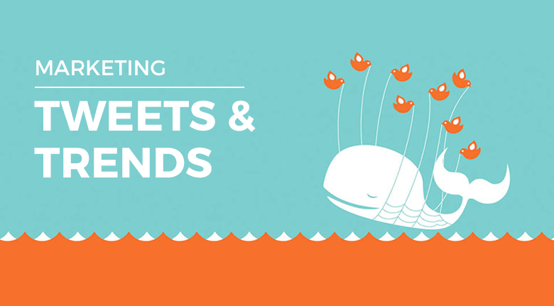 Marketing Your Business with Promoted Tweets and Trends