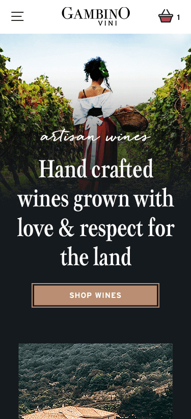 Digital Agency Design for Shopify Store Featuring Winery and Responsive Website Mockup