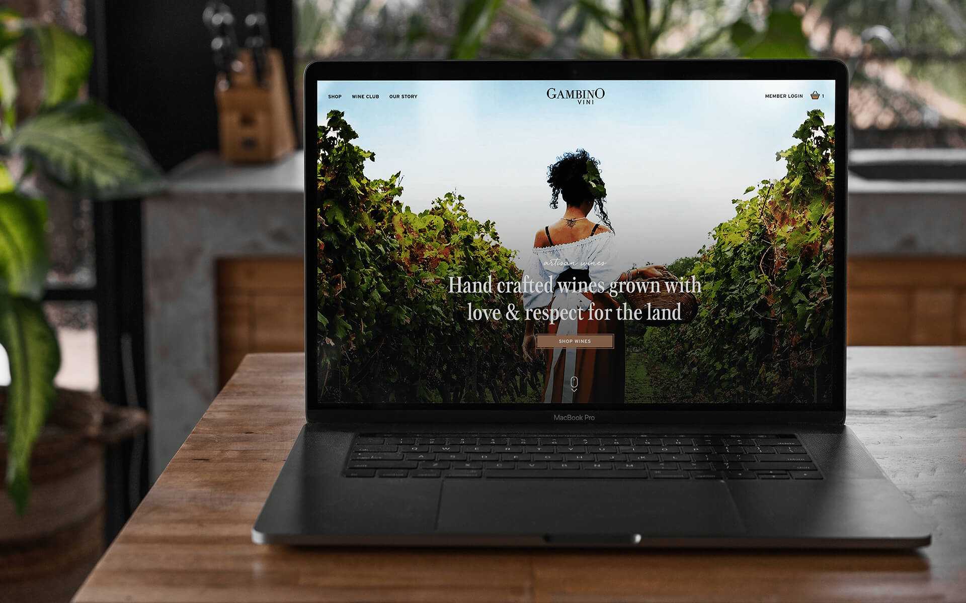 Laptop Showing Gambino Winery Website With A Woman In A Vineyard