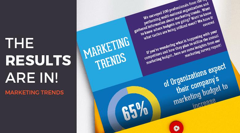 Marketing Survey Insight